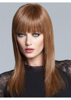 Synthetic Sleek Straight Lace Long Wig